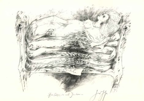 Günter Grass - Die Prinzessin auf der Erbse